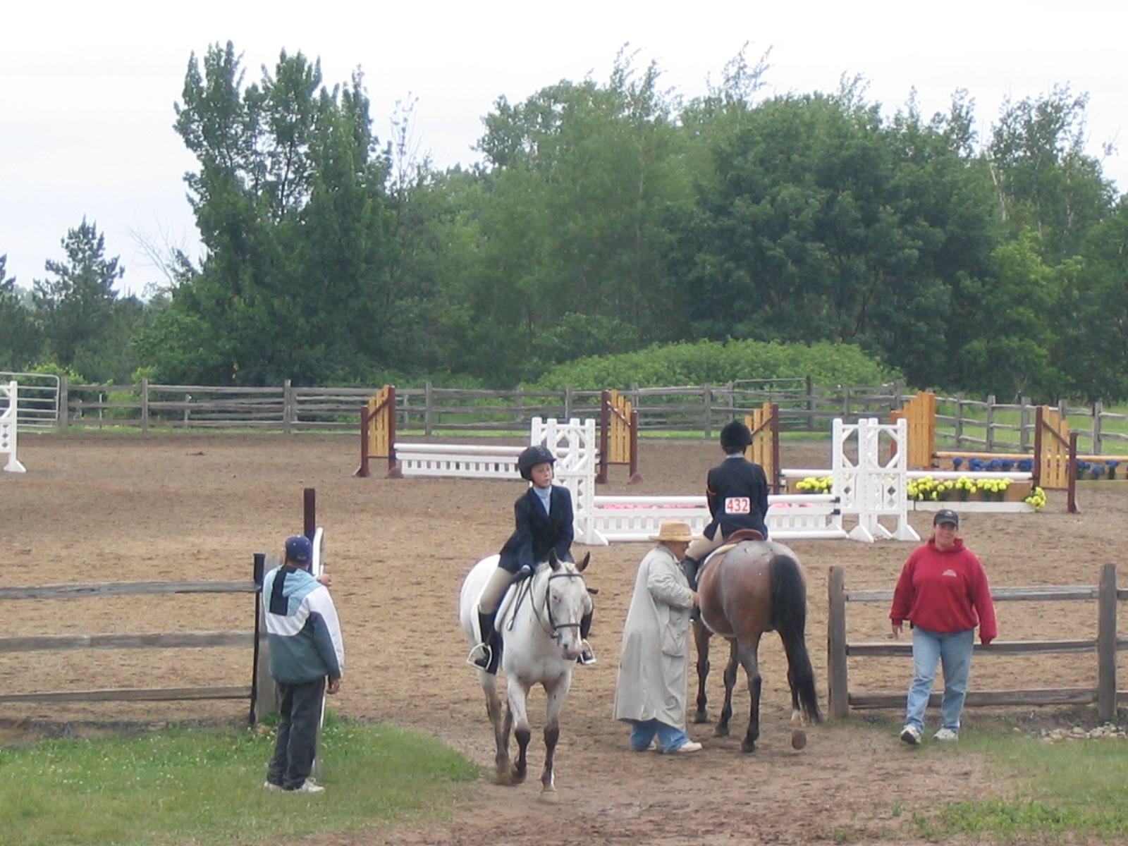 Lessons Amp Training Wisconsin Equestrian Center